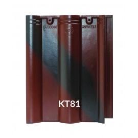Ngói chính - KT81
